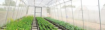 Tejido Sombra para el Agro